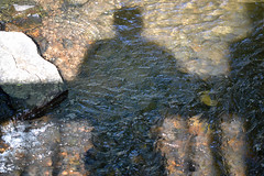 Shadow in the Creek (MTSOfan) Tags: selfie shadow creek rail mtsofan john