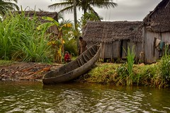 Fishing Family (Rod Waddington) Tags: africa african afrique afrika madagascar malagasy family father son pirogue canoe boat huts water fishing fishermen channel palm tree clothes people culture cultural child ethnic ethnicity
