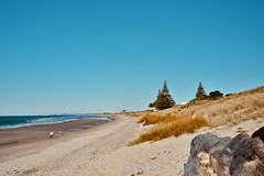 Papamoa beach (Cecilia Mussoni) Tags: beach papamoa newzealand landscape nature tree sea ocean sky summer adventure travel trip 35mm camera photo nikon photographer photography reporter