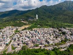 DJI_0635 (稀有魚類2) Tags: hongkong newterritories hk