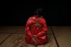 A7201600 (rickytanghkg) Tags: hongkong shibari shibariart bondage rope japanesestyle sony a7ii sonya7ii