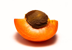 Slice of Apricot (Antti Tassberg) Tags: simple againstwhite food macro macromondays refreshments aprikoosi minimal hedelmä closeup 100mm apricot fruit lens marillen minimalistic prime simplified highkey