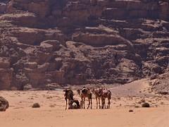 Wadi Rum (80) (pensivelaw1) Tags: jordan desert crags wadirum trains middleeast asia rockformations aqaba
