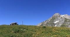 Arrivée sur la Grand Garde et le Chavalard qui se pointe (bulbocode909) Tags: valais suisse ovronnaz grandgarde montagnes nature chavalard alpages tables bancs prairies vert bleu jaune paysages