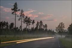 20180516. Velisemõisa. Fog. 3059 (Tiina Gill (busy)) Tags: estonia raplamaa velisemõisa evening night outdoor landscape fog road traffictrail
