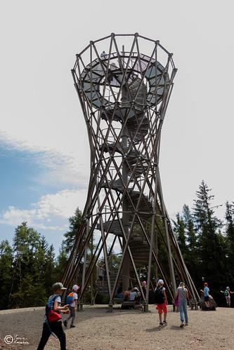 Wycieczka na Górę Borową-51