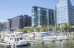 Wharf marina (Tim Brown's Pictures) Tags: washingtondc sw thewharf districtwharf dcwharf waterfront waterstreetsw washingtonchannel river recreation pier visitors tourists destination food drink play urbanrenewal development marina washigton dc unitedstates