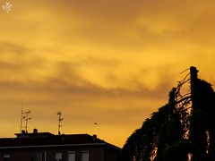 Surrealtà d'atmosfera. Milano (diegoavanzi) Tags: milano milan italia italy lombardia lombardy cielo sky sera evening tramonto sunset sundown nuvole clouds sony hx300 bridge
