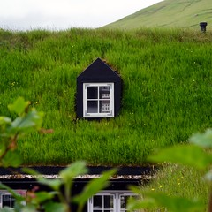 Roof in Kvivik (mikael_on_flickr) Tags: roof tag tetto kvivik føroyar færøerne isolefaroe faroeislands grass erba græs gras grøn grün green verde vert window finestra