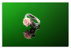 Coral rose ring on green. (johnhjic) Tags: johnhjic reflection reflections studio flash broncolor cwsellors coral pink ring silver black white green jewellery macro her she nikon nikond850 d850 lady