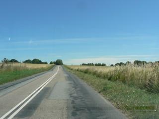 Zealand roads