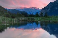 Vermilion Lakes, Banff (Meleah Reardon) Tags: banff alberta canada vermillion lakes canadian rockies mountain sunset lake sunrise pink green blue trees water travel landscape