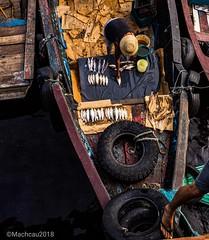 Montando a banca! #pescado #portoManausModerna #RioNegro # Manaus #Amazonas (machcau) Tags: portomanausmoderna pescado amazonas rionegro