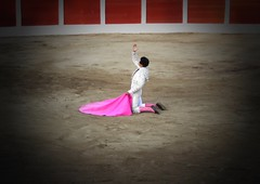 Al cielo (aficion2012) Tags: ceret céretdetoros francia france corrida bull bullfight tauromachie tauromaquia taureaux taureau matador toro torero toros toreador fraile gomez del pilar torear catalogne catalunya cataluña catalonia porta gayola capa capote rodillas