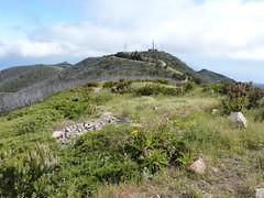 Garajonay (ossian71) Tags: spanyolország spain kanáriszigetek canaryislands gomera lagomera garajonay tájkép landscape természet nature hegy mountain