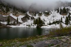 Morning, in a cloud (Brandon Rasmussen) Tags: utah uintawasatchcachenationalforest mountnaomiwilderness highcreeklake hiking backpacking nature landscape nikond7100 nikkor1224mmf4g 1224f4