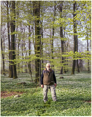 Friend of Mine - 4x5 Kodak Porta 400NC (magnus.joensson) Tags: sweden skåne friend spring forest green dalby april large format 4x5 intrepid camera voigtlander heliar 21cm f45 kodak porta 400nc exp laboratoriet epson v800 scan nofilter