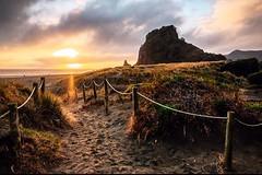 Another stunning sundown in south Piha (nickwilloughby) Tags: nz newzealand f14 xf16mm 16mm xf xt2 fujifilm fujifeed fujiframez landscape traveler travel roadtrip sea ocean beach westcoast piha nature sun sunrise sunset sundown