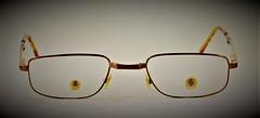 I Got My Beady Eye On You (MedievalRocker) Tags: ssc glasseyes glasses beadyeyes