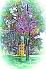 Tower & Tree (Rusty Russ) Tags: lookout tower tree atkinson common newburyport ma style colorful day digital graffiti window flickr country bright happy colour eos scenic america world sunset beach water sky red nature blue white green art light sun cloud park landscape summer city yellow people old new photoshop google bing yahoo stumbleupon getty national geographic creative composite manipulation hue pinterest blog twitter comons wiki pixel artistic topaz filter on1 tinder
