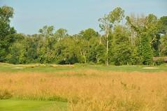 Settn Down Creek 034 (bigeagl29) Tags: settn down creek golf club ansley ga georgia alpharetta milton settndowncreek