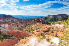 Beautiful Landscapes of Sandstone Cliffs and Pinnacles of Bryce Canyon National Park in Utah state, United States of America (DmitryMorgan) Tags: landscape panorama usa utah america american brown bryce brycecanyon brycecanyonnationalpark canyon cliff colorful columns day dusk famous formation grand hoodoo landmark monument morning mountain national natural nature orange peaceful pinnacle point red rock sandstone scenic serenity shapes southwest spires sunrise tourism unique us valley vibrant viewpoint