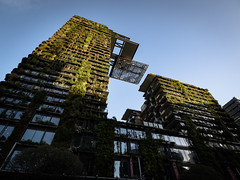 The Vertical Central Park (Daveography.ca) Tags: building sunset verticalgarden australia centralpark sydney nsw chippendale skyscraper heliostat highrise tower newsouthwales cantilever architecture green jeannouvel ateliersjeannouvel greenwall onecentralpark