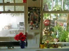 Backyard split personality (candyruth) Tags: yard backyard window kitchen signs