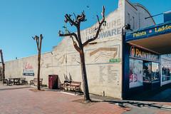 Maryborough 016 (Peter.Bartlett) Tags: vsco peterbartlett victoria urban shopfront tree m43 australia wall city olympuspenf sign kodakportra160emulation facade microfourthirds maryborough au