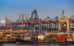 Verladeterminal Burchardkai (schda22) Tags: deutschland germany hamburg terminal burchardkai ship container work sea