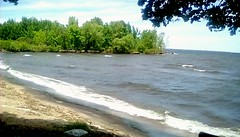 Shoreline trees - TMT (Maenette1) Tags: shoreline trees beach water veteransmemorialpark menominee uppermichigan treemendoustuesday flicker365 allthingsmichigan absolutemichigan projectmichigan