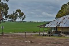 North Yorkrakine entropy (Gasgaslex) Tags: yorkrakine abandoned derelict homestead pioneers