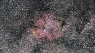Elephant Trunk Nebula - IC1396