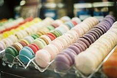 Verona, 2018 (M-L Pocket) Tags: canonae1 canon film 35mm macarons cake patisserie agfavista agfavista200 ishootfilm italy verona explore adventure rainbow magic colours analog analogue