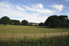 Home Park (Ryan Hadley) Tags: homepark trees green park windsorcastle castle windsor london england unitedkingdom uk europe
