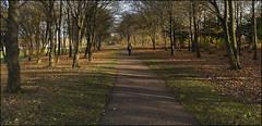 Campbell Park, named after Lord 'Jock' Campbell of Eskan, first Chairman, in 1967, of Milton Keynes D.C. (11/17 bo.01) (Ted and Jen) Tags: miltonkeynes newtown campbellpark lordcampbellofeskan jock