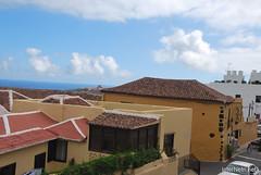 Ікод-де-лос-Вінос, Тенеріфе, Канарські острови  InterNetri  166