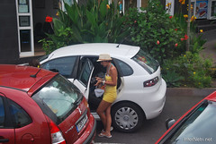 Ікод-де-лос-Вінос, Тенеріфе, Канарські острови  InterNetri  153