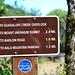 Mt. Umunhum Trail (3)