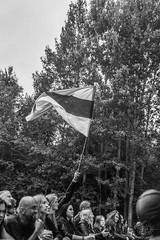 Havukruunu (29.06.2018 Kilkim Žaibu, Varniai)
