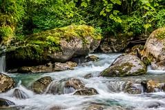 Vallée d'Estours (Ariège) (PierreG_09) Tags: seix ariège pyrénées pirineos couserans occitanie midipyrénées eu torrent ruisseau coursdeau estours
