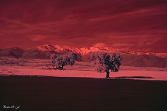 Calor rojo (pedroramfra91) Tags: verano summer calor hot paisaje landscape exteriores outdoors rojo red arboles trees montañas mountains infrarrojo cielos sky nubes clouds