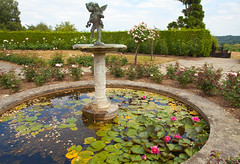 Rose Garden @ Emmetts (Adam Swaine) Tags: ponds emmetts emmettsgdns kent kentweald nationaltrust gardens england english britain british canon beautiful uk ukcounties fountain summer 2018 roses rosegardens