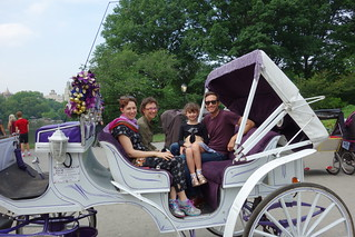 NYC - horse and carriage ride - central park