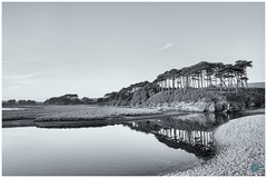 Budleigh Salterton (pm69photography.uk) Tags: budleighsalterton budleighbeach devon southwest ilce7rm3 ilovedevon bw blackandwhite moody monochrome niksilverfx niksilverefexpro2 sony sonya7r3 sonya7riii atmospheric atmosphere a7r3 loxialens loxia loxia21mm landscapes