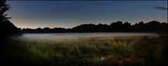 Morning fog (na_photographs) Tags: nebel frühnebel heide cologne landschaft nature natur