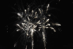 Fireworks 2018 (Adventurer Dustin Holmes) Tags: richlandmo richlandmissouri missouri ozarks 2018 fireworks outdoor pulaskicounty shadydellpark explore explored richland celebration independenceday annual midwest event events