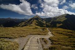 箭竹草原 (風景獵人) Tags: taiwan 台灣 風景 風景獵人 landscape nantou 南投 高山 mountain 合歡山 hehuan