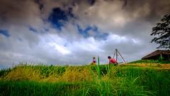 Arbeiten auf einem Reisfeld (Markus Jaschke) Tags: fujifujixe3asienbalisingapur2018 penebel bali indonesien id