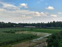 A Tughlakabad WDM 3D with BCNA rake in tow waiting for clearance amidst beautiful scenery (railfansidhant) Tags: indian railways locomotive wdm 3d alco countryside india bcna train